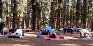 Yoga : une issue pour gérer le stress
