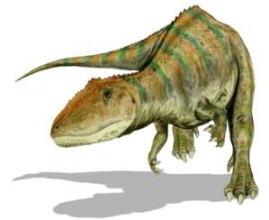 Carcharodontosaurus à dents de sabre