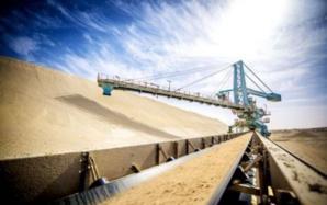 Le Maroc toujours en tête des exportateurs mondiaux de phosphates