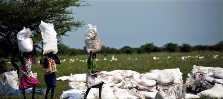 Des femmes portent des sacs de nourriture distribués par des organisations non-gouvernementales à Padding