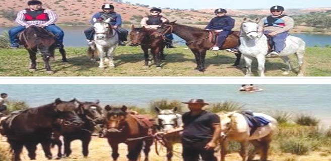 Doukkala : Promotion du tourisme équestre