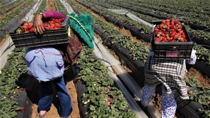 Cluster Lalla Mimouna : Le parquet ouvre une enquête judiciaire