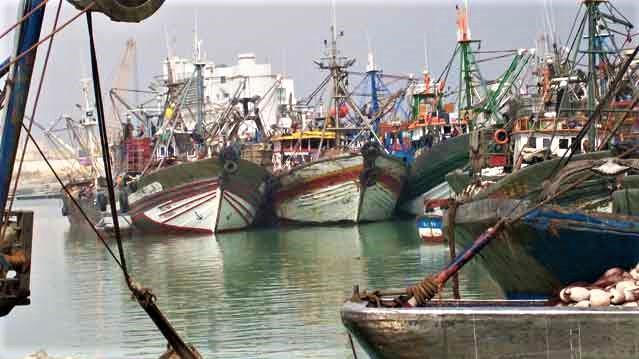 La pêche côtière et artisanale en recul au T1-2020