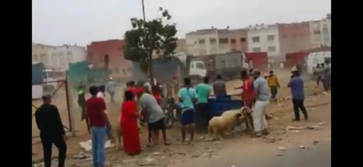 Vingt interpellations pour vol, violence et jets de pierres dans un marché de bétails à Casablanca