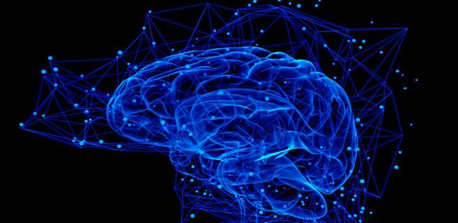 Neuroscience : Les implants Neuralink bientôt prêts pour les tests sur l'Homme