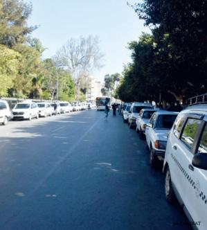 Rabat : Les grands taxis de l'Avenue Mansour Eddahbi en rang discipliné