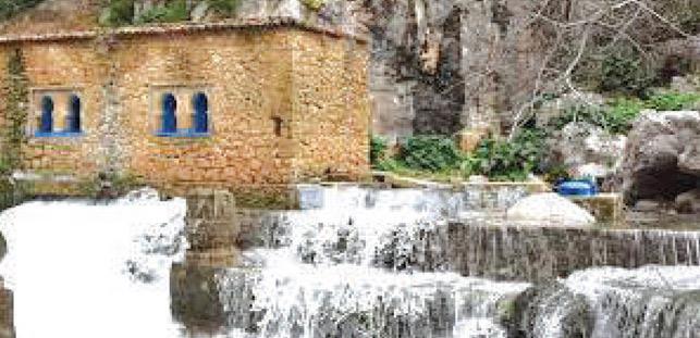 Chefchaouen : Des liens entre l'agriculture et le tourisme rural