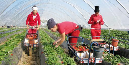 L'ANAPEC et l'OIM œuvrent pour l'autonomisation des travailleuses migrantes