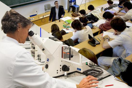 Ministère de l'éducation : Aucun nouveau statut pour les enseignants chercheurs n'a été adopté