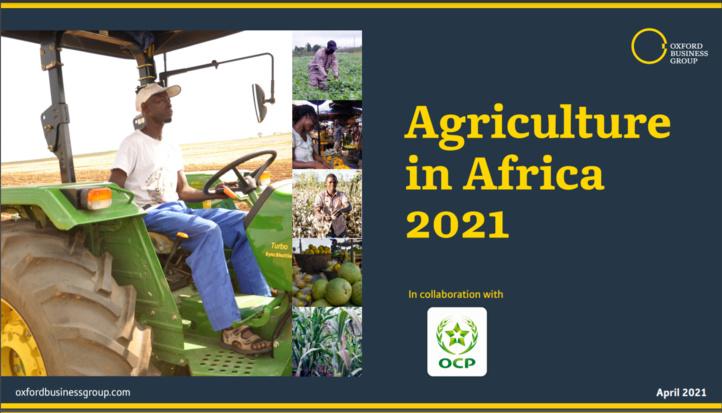 OCP & Oxford Business publient un rapport l'industrie agricole africaine