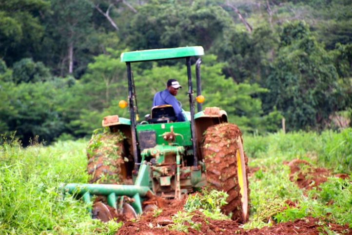 Perspectives du secteur agricole sur le continent: La digitalisation technologique, facteur de productivité