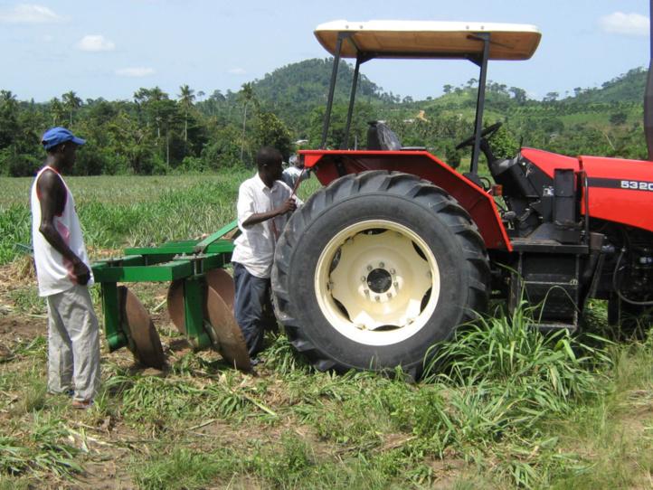 Perspectives du secteur agricole sur le continent :  La digitalisation technologique, facteur de productivité