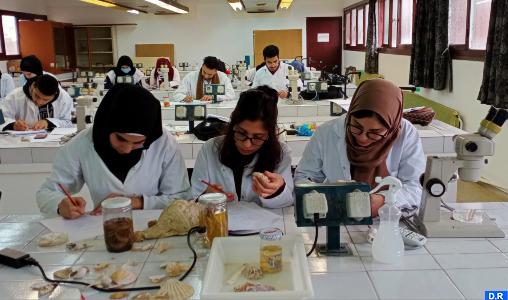 Sciences de la mer et recherche halieutique : Accord de coopération entre la FAO et le Maroc
