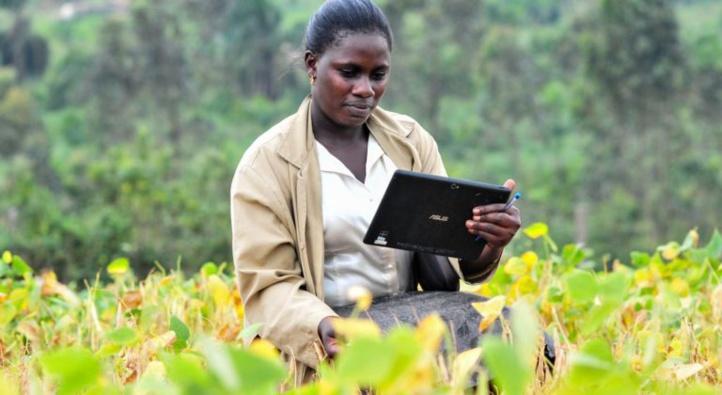 La numérisation de l'agriculture sur le continent: Les nouvelles opportunités pour doper les économies des Etats