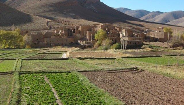 Melkisation de terres collectives : MCA-Morocco et le CAM se mobilisent pour l'éducation financière