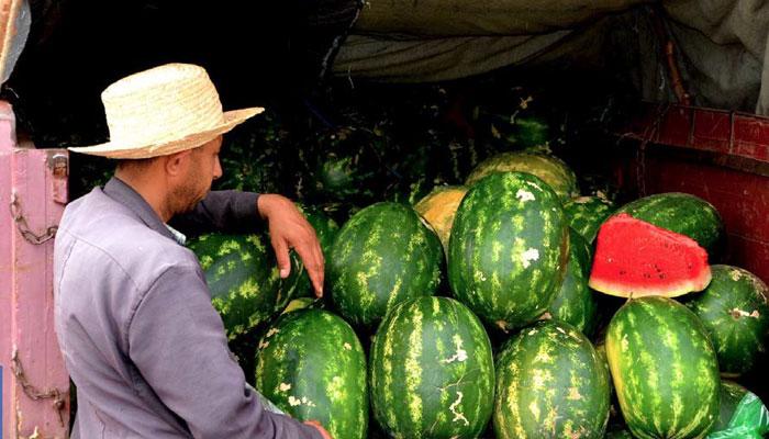 Consommation: Pourquoi la pastèque marocaine ne tourne plus rond ?