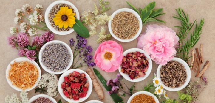 La 3e édition du programme de recherche Valorisation des Plantes Médicinales et Aromatiques lancée
