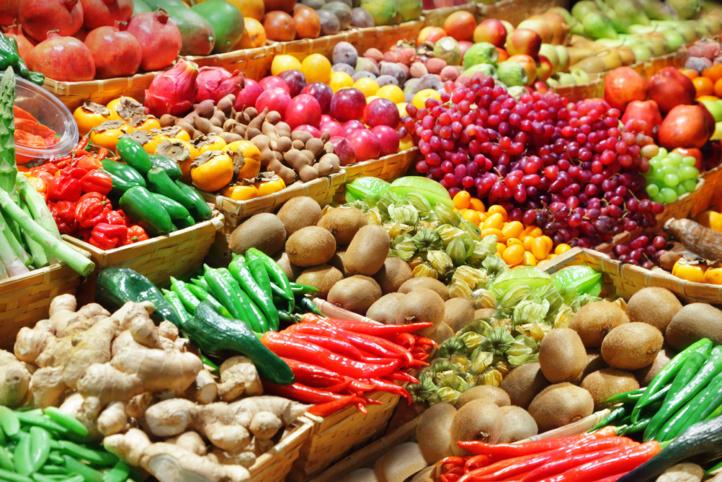 FAO : Vers la promotion de la durabilité du secteur horticole marocain