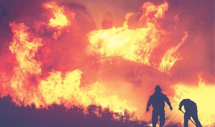 Fès-Meknès : Des feux de forêts ravagent le patrimoine forestier