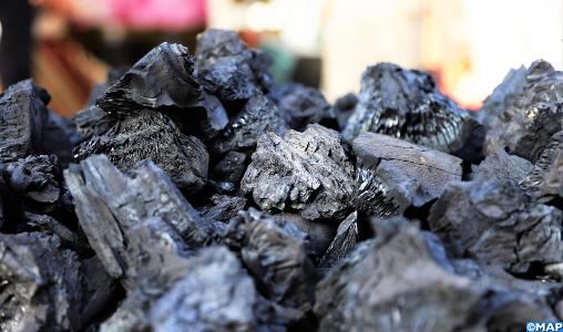 Aïd Al Adha : Le ministère de la Santé met en garde contre les risques d'intoxication due au charbon