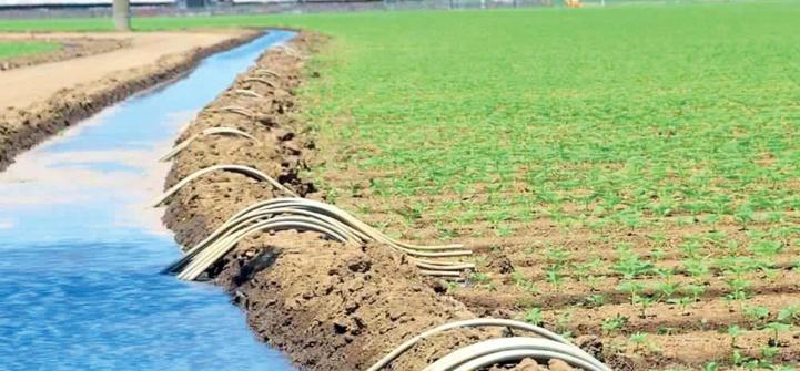 Rapport de la BAD sur l'agro-industrie : Développer le monde rural continental à travers les SAPZ