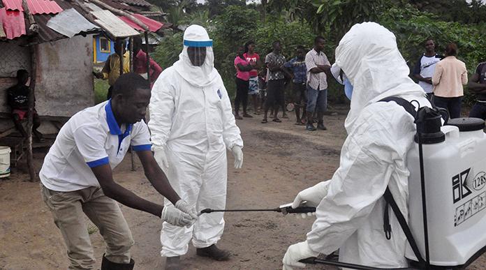 Virus de Marburg : Premier cas détecté en Guinée