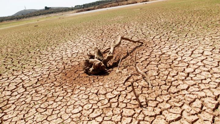 Environnement : lancement du Conseil de la jeunesse arabe pour le changement climatique