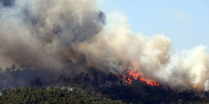 France : Un violent incendie en Côte d'Azur