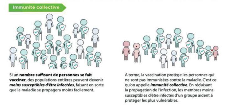 Face au Delta : L'immunité collective est-elle toujours réalisable ?