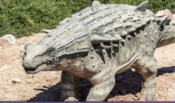 Découverte inédite : le plus ancien ancêtre des ankylosaures se trouverait au Maroc