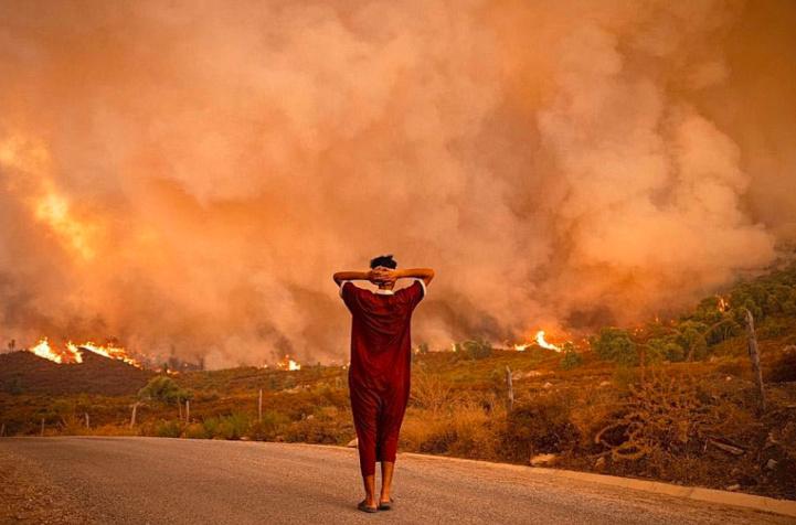 Feux de forêts : baisse de 47% de la surface forestière incendiée en 2021