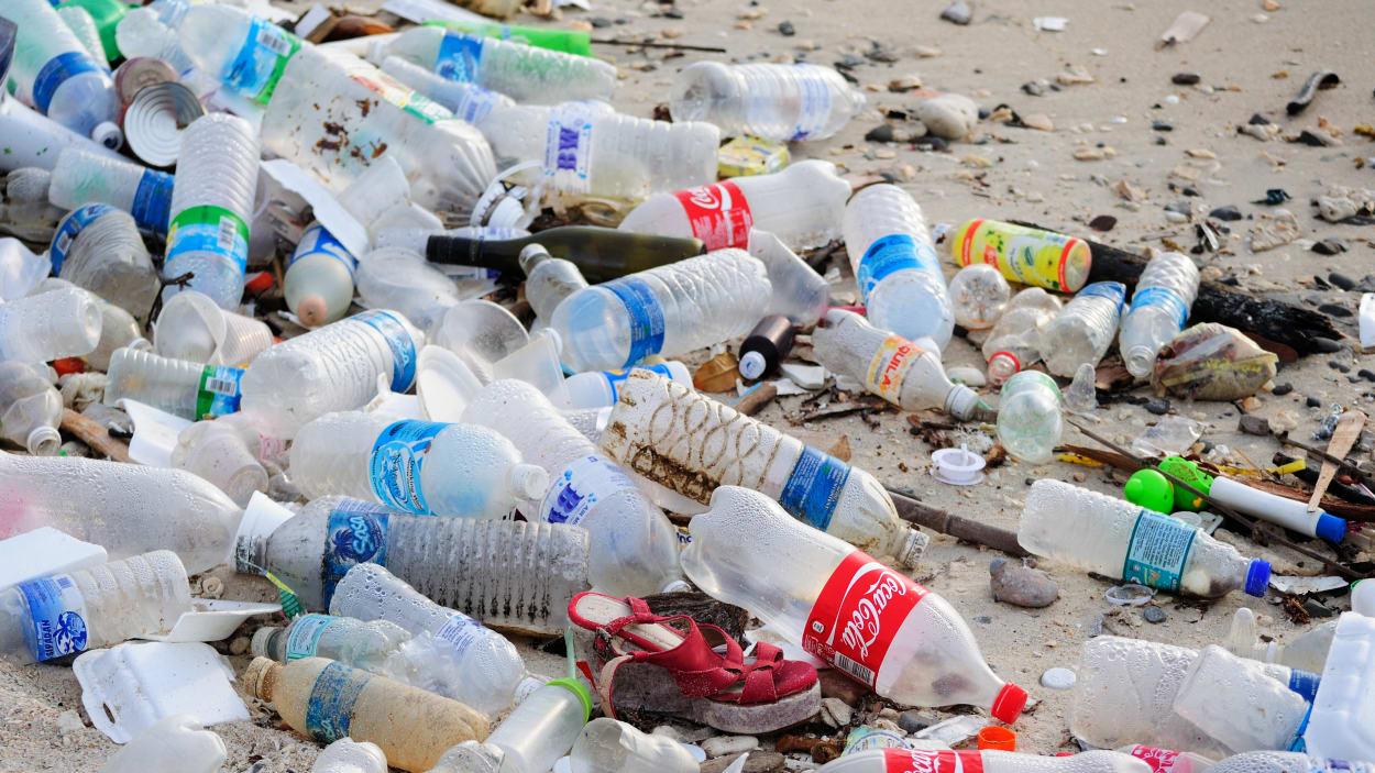 Lutte contre les sacs en plastique