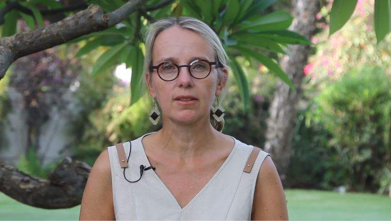 COVID-19 :  Compte rendu de l'ambassade de France face à la crise