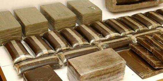 Trafic de drogue : Interpellation de quatre individus à Tan-Tan