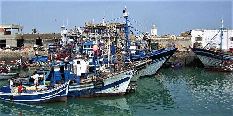 A Safi, la pêche artisanale et côtière souffre