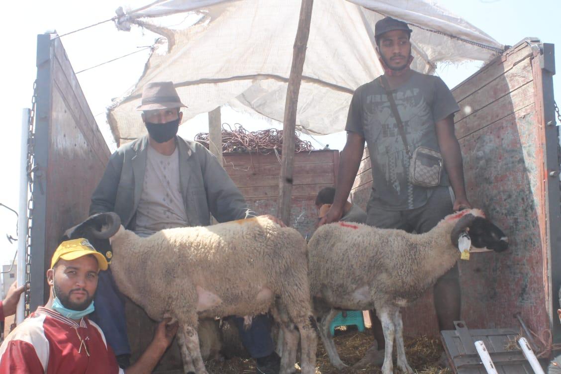 Les petits métiers de l'Aid Al-Adha fleurissent à nouveau