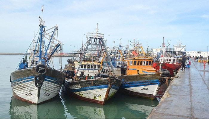 Laâyoune: Les pêcheurs de poulpe soumis aux tests de dépistage avant la reprise
