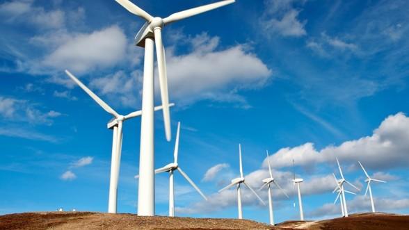 Parc éolien de Taza : lancement de la première phase de construction