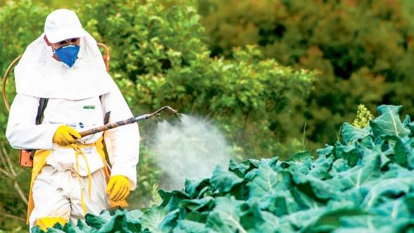 Greenpeace : Le Maroc importe des pesticides européens proscrits par l'UE