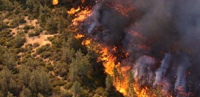 Syrie : Des feux de forêt font rage sur tout le littoral