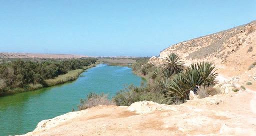 Souss-Massa / Parc national : Espace éco-biologique riche d'atouts touristiques