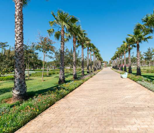 Environnement : Rabat trouve des solutions pour ses espaces verts
