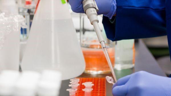 Covid-19: le traitement aux anticorps de Regeneron autorisé aux Etats-Unis