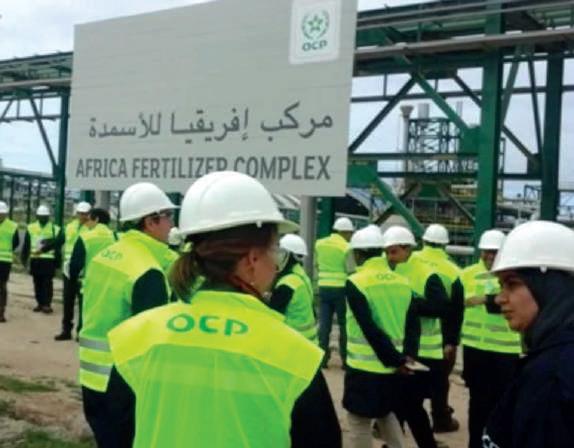 OCP : Centenaire de la grande machine à nourrir le monde