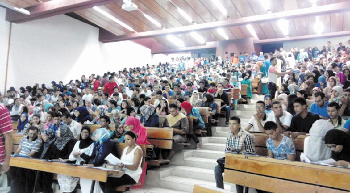 Les étudiants du cycle de licence recevront leurs bourses d'études dès le 30 décembre