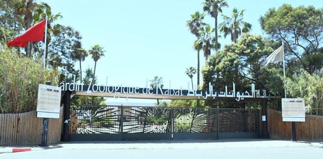 Zoo de Rabat : La visite virtuelle en live est désormais possible