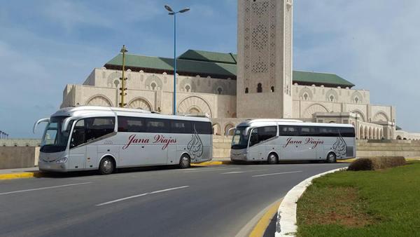 Transport touristique : Le CVE à la rescousse d'un secteur durement touché