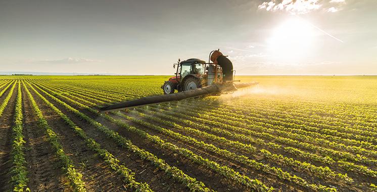 Agriculture : L'année s'annonce prometteuse