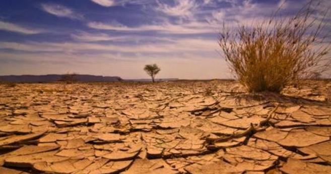 Pénurie d'eau et précipitations irrégulières… la BM dresse un sombre tableau de la situation