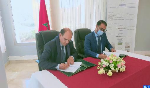 Énergie nucléaire: Le CNESTEN-Maroc et l'ARSN-Mauritanie renforcent leur coopération